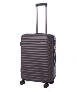 Troler Ella Icon Assign, Gri, 68x46x26 cm, 81 L, 4 roti spinner